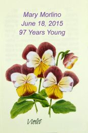 Violet Birthday Party Seed Packet