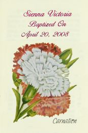 Carnation Baptism Seed Favor