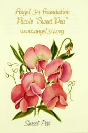 Sweet Pea Corporate Seed Packet